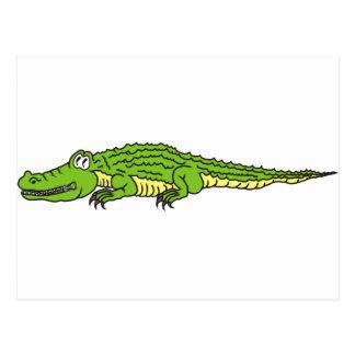 Alligator, The Silent Cocodrile Postcard