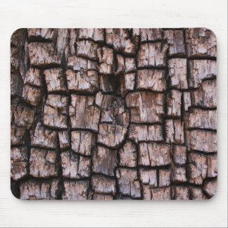 Alligator Tree Bark Mouse Pad