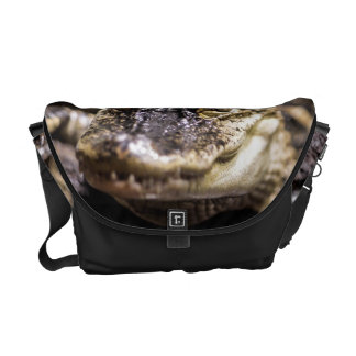 Alligator Wildlife Reptile Animal Photo Messenger Bag