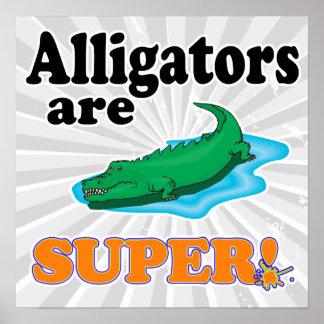 alligators are super poster