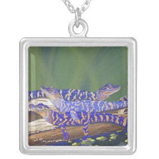 alligators square pendant necklace