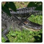 Alligators Sunning Square Wall Clock