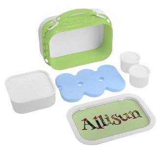 Allisun's Colorful Fun Lunch Box