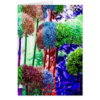 Allium colors card