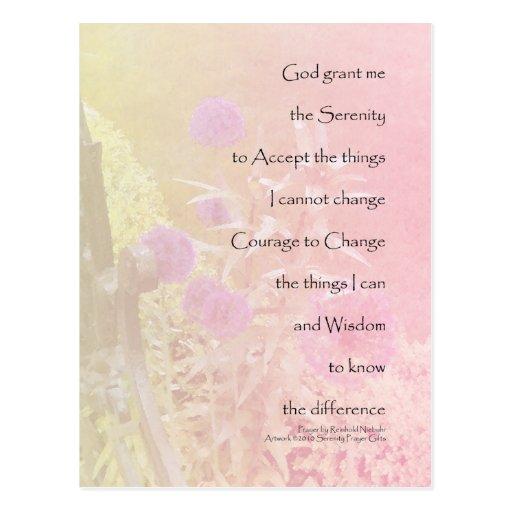Allium del rosa del rezo de la serenidad postal
