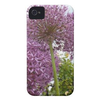 Allium Flower iPhone 4 Case-Mate Cases