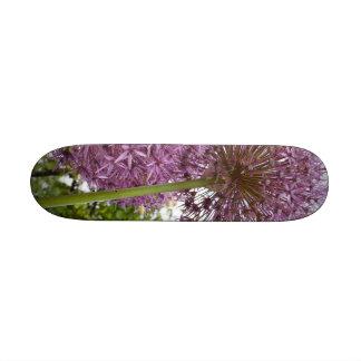 Allium Flower Skate Board Deck