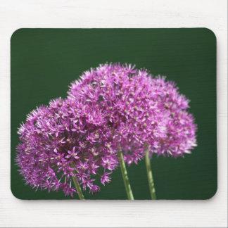 """allium Globemaster"" Floral Photo Mouse Pad"