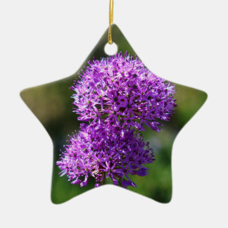 Allium Double-Sided Star Ceramic Christmas Ornament