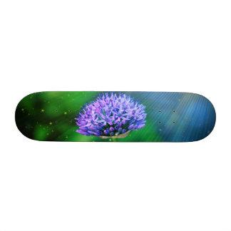 Allium Skate Boards