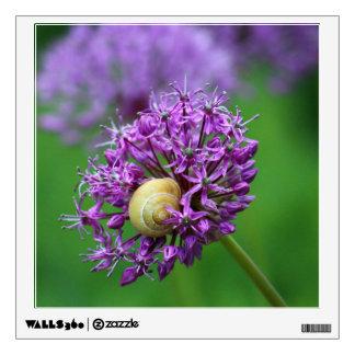Allium Wall Skins
