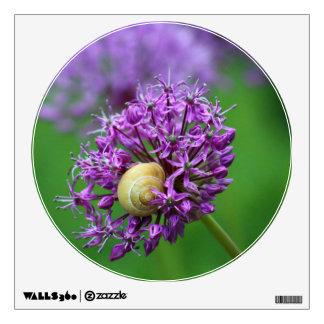 Allium Room Graphic