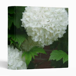 Allium White Round Flowers Binder