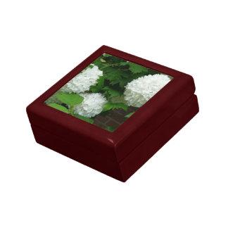 Allium White Round Flowers Gift Box