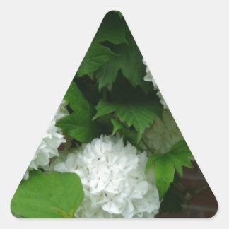 Allium White Round Flowers Triangle Sticker