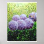 Alliums at Laycock - Bee Lilli  Semi Gloss 18x24 Poster