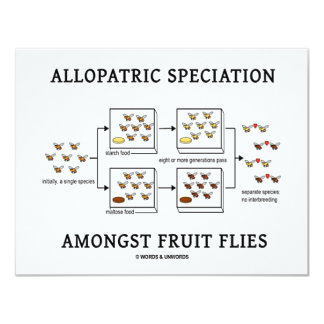 Allopatric Speciation Amongst Fruit Flies 4.25x5.5 Paper Invitation Card