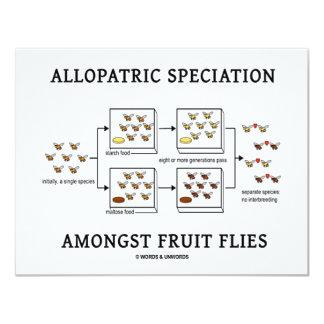 Allopatric Speciation Amongst Fruit Flies Card