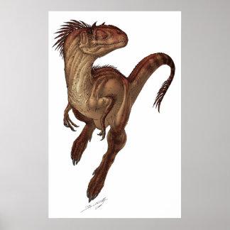 Allosaurus fragilis póster