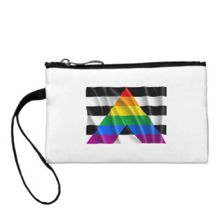 ALLY FLAG FLYING CHANGE PURSES