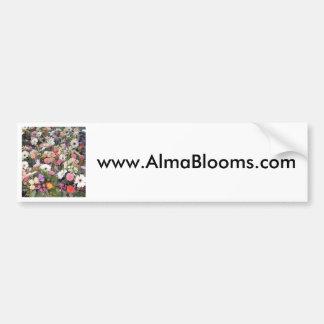 Alma Blooms 1 Car Bumper Sticker