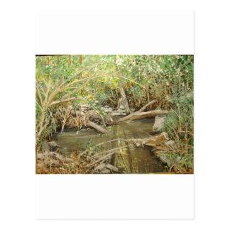 Alma Creek Watercolor Postcard