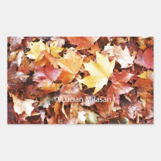 Alma del otoño pegatina rectangular
