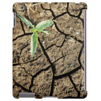 Almácigo en tierra agrietada funda para iPad