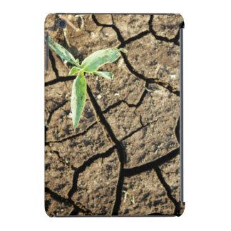 Almácigo en tierra agrietada fundas de iPad mini