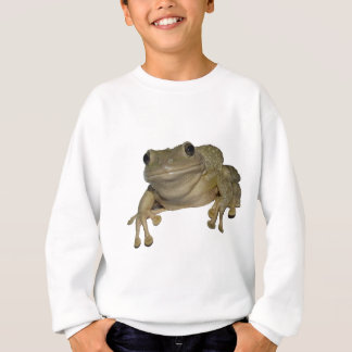 Alma's Frog