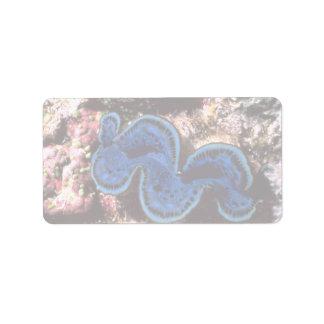 Almeja gigante (máximos) del Tridacna Shell Etiquetas De Dirección