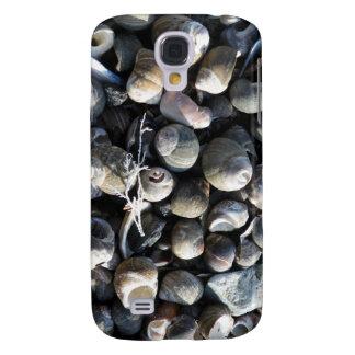 Almejas y mala hierba del mar