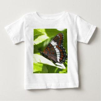 Almirante blanco mariposa playera