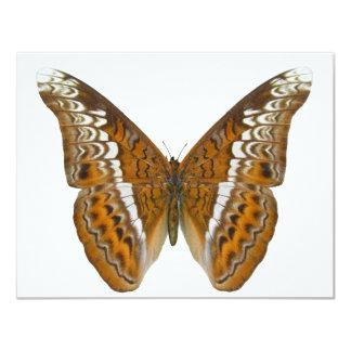 Almirante Butterfly Invitaciones Personales