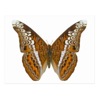 Almirante Butterfly Postal