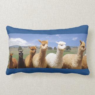 Almohada acogedora del Lumbar de la alpaca Cojín Lumbar