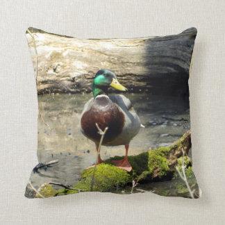 Almohada alegre del pato del pato silvestre