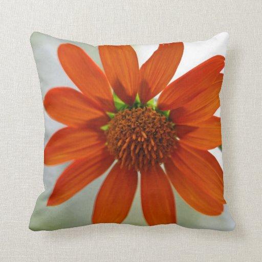 Almohada anaranjada de la flor