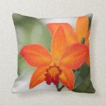 Almohada anaranjada del algodón de la orquídea