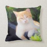 Almohada anaranjada del cuadrado del gato de Tabby Cojín Decorativo
