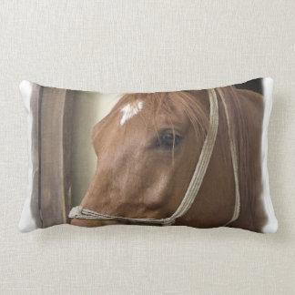 Almohada árabe de los caballos