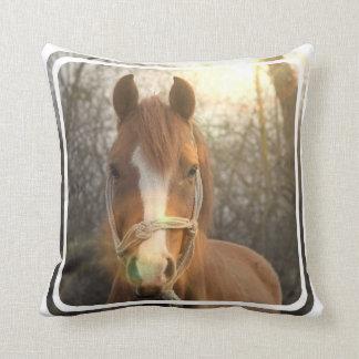 Almohada árabe del caballo de la castaña