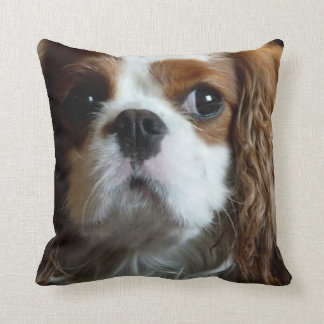 Almohada arrogante del amortiguador del perro de a