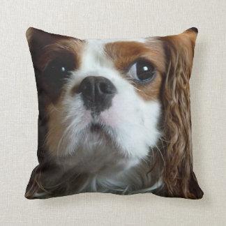 Almohada arrogante del amortiguador del perro de cojín decorativo
