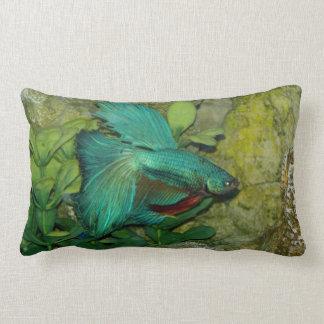 Almohada azul de los pescados de Betta