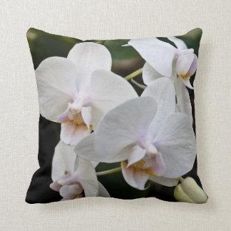 Almohada blanca de la orquídea