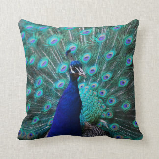 Almohada bonita del pavo real
