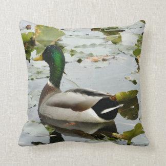 Almohada brillante del pato del pato silvestre