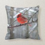 Almohada cardinal roja alegre