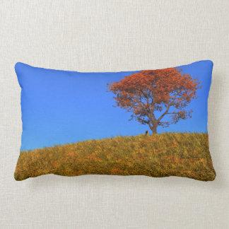 Almohada clara del día del otoño
